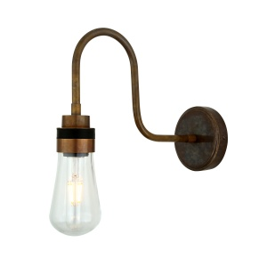 Bo Swan Neck Bathroom Wall Light IP65